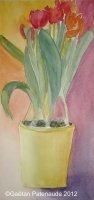 2003-08 Pot de tulipes